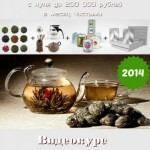 Чайный бизнес с нуля до 200 000 рублей в месяц чистыми. Видеокурс (2014) WEBRip