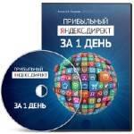 Прибыльный Яндекс.Директ за 1 день. Видеокурс (2013)